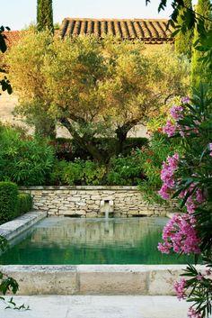 Die 223 besten bilder von mediterraner garten - Wasserteich im garten ...