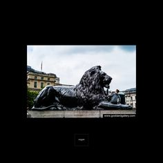 Interior Design Photos, London Photography, Home Art, Offices, Squares, United Kingdom, Photo Wall Art, Lion Sculpture, Hotels