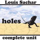 theme essay on holes