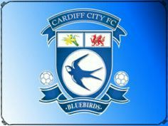 Cardiff are my Dad's team, so I kind of support them, after Everton. Cardiff City Football, Cardiff City Fc, Cardiff City Wallpaper, Logo Wallpaper Hd, Wallpapers, Wales Rugby, Dog Football, Hull City, Football Wallpaper