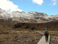 Do the Tongariro Crossing