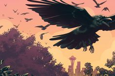 The Secret of Life of Urban Crows and why Seattle may be the Corvid Capital of the World.