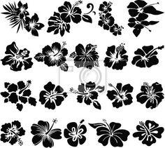 Adesivo de parede flor de hibisco s - imprimir • br.pixersize.com