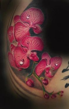 realistic_branch_of_red_orchid_with_drops_of_dew_tattoo.jpg.pagespeed.ce.XYvzXoZzVI.jpg (455×720)