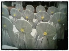 White crystal hoods with a ivory rose, the ashbourne hotel