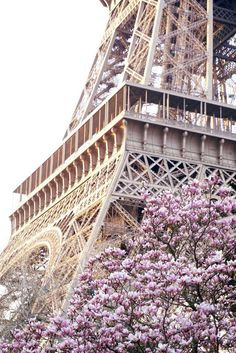 champ_de_mars_eiffel_tower
