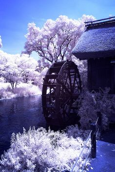 waterwheel by KoTo_EoEo