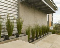 diseño de jardines, estilo moderno de muro