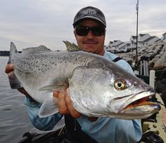 how to catch big saltwater fish from shore