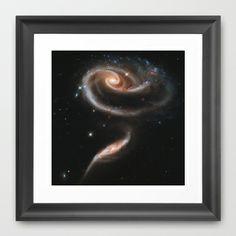 Rose Framed Art Print Promoters - $31.00