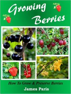 Growing Berries: How To Grow & Preserve Strawberries, Raspberries, Blackberries, Blueberries, Gooseberries, Redcurrants, Blackcurrants & Whitecurrants., James Paris - Amazon.com