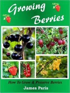 Growing Berries: How To Grow & Preserve Strawberries, Raspberries, Blackberries, Blueberries, Gooseberries, Redcurrants, Blackcurrants & Whitecurrants., James Paris - Amazon.com