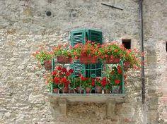 tuscan gardens - Google Search