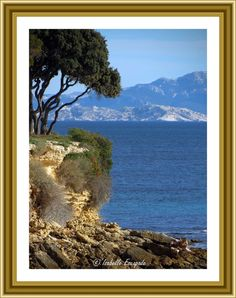 Sausset les Pins... http://www.my-art.com/isabelle-escapade/collections/provence