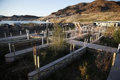 #Facing #historically low levels, Lake Mead officials are fending off a water #war...