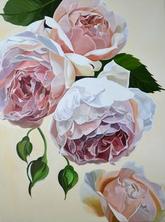 A delicate spray of peach coloured, David Austin roses tumble down the canvas.  The background is a warm, antique white.