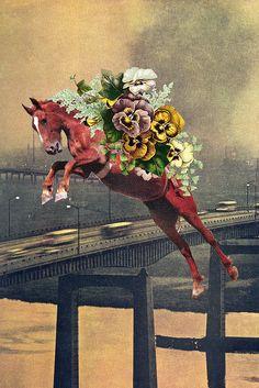 As Colagens de Eugenia Loli | Flores e Corações