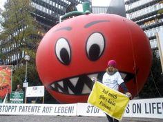 Entidades alertam para investida da Monsanto sobre patentes na Europa  Tomate-monstro, em protesto, representa o desenvolvimento de transgênicos pela Monsanto na Europa. (Foto: Divulgação / no