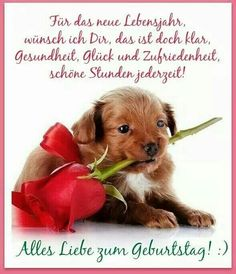 Geburtstagswünsche Birthday Wishes For Women, Happy Birthday Quotes, Birthday Greetings, Birthday Clips, Animal Wallpaper, Wallpaper Desktop, Greeting Cards Handmade, Happy Day, Cute Wallpapers