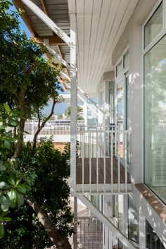 Tree top balconies off the bedrooms of a private Gordon's Bay beachfront residence #happyhouse #architecture #beachfront #balcony #outside Happy House, Tree Tops, Balconies, The Outsiders, Bedrooms, Stairs, Windows, Architecture, Projects