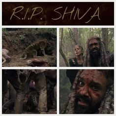 Nooooooo!!! SHIVA  The Walking Dead Season 8 Ep4 Some Guy