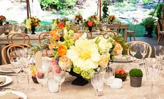 Tabletop with patterned beige tablecloth and an array of flowers and potted plants