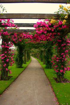 Gärten und Parks | Entries Kategorie Gärten und Parks | Blog liudvas: LiveInternet - Russian Service Online Diaries