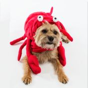 Lobster costume! Canine Styles Exclusive Dog Halloween Costumes for pets