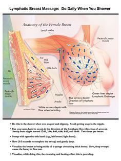 lymphatic breast massage–congestion can occur from wearing bras, especially und… - Health Gezgor Massage Tips, Massage Benefits, Massage Techniques, Massage Therapy, Facial Massage, Lymphatic Drainage Massage, Lymph Nodes, Lymphatic System, Health Facts