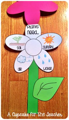 Add this cheery craft to your plant unit!  In Bloom {Craftivity & Printables}!