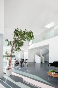 On the ground floor of this house, an open-plan space has a single-storey kitchen, and a double-height dining room and lounge.