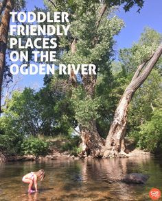 Hanging out on the Ogden River | Adventurin' | The Salt Project | Things to do in Utah with kids