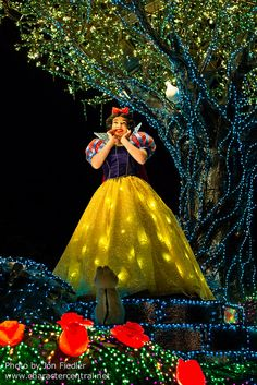 2014 - Snow White - Tokyo Disneyland Electrical Parade Dreamlights