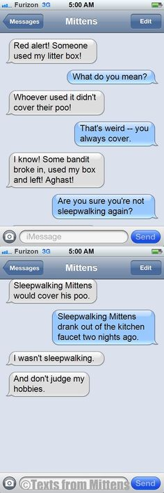 NEW Daily Texts from Mittens: The Sleepwalking Edition  More Mittens: http://textsfrommittens.com/
