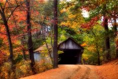 A long dirt road leading to a covered bridge surrounded by colorful Fall foliage in Sturbridge, Massachusetts in New England. ~Photographer Joann Vitali