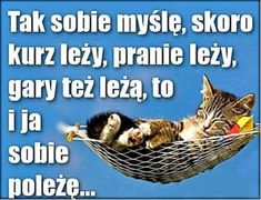 Funny Lyrics, Funny Quotes, Animals And Pets, Funny Animals, Weekend Humor, Happy Photos, Happy Weekend, Man Humor, Motto
