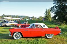 1956 Ford Thunderbird.....sitting in the garage! | Things I Like ...