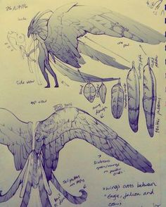 ArtStation - Risen Illustrations and Design, Rachel Walpole Fantasy Character Design, Character Design Inspiration, Character Art, Creature Concept Art, Creature Design, Mythical Creatures Art, Fantasy Creatures, Animal Drawings, Cool Drawings