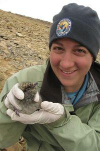 Volunteer - Kodiak - U. Fish and Wildlife Service Canada Goose Jackets, Wildlife, Winter Jackets, Fish, Projects, Winter Coats, Log Projects, Ichthys