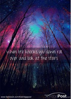 When life knocks you down roll over and look at the stars.