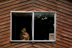 Behind Glass — Lisa Sorgini Through The Window, The New Yorker, Commercial Photography, Mother And Child, Children Photography, Glass Door, Photo Booth, This Is Us, Lisa
