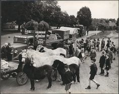"""The circus comes to town, Drouin, Victoria by National Library of Australia Commons, via Flickr. Fitzpatrick, Jim, 1916-    Title devised by cataloguer from caption on verso.; Part of the collection: Drouin town and rural life during World War II.(1939-1945); Inscriptions:""""U429/25 --In pencil; Paul Guillumette, Inc. 475 Fifth Ave, New York City"""" --Stamped on verso.; """"U429/25. Circus comes to town. Drouin's children like others all over Australia -- and all over the world -- can't resist it."""