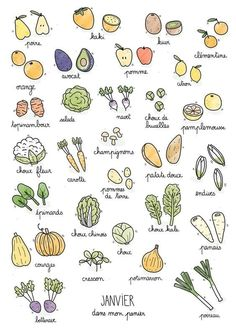 Fruits & Vegetables calendar on Behance Sketch Note, Food Doodles, Bujo Doodles, Batch Cooking, Bullet Journal Inspiration, Journal Ideas, Food Journal, Doodle Drawings, Food Illustrations
