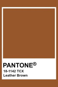 Pin by Color Wheel on Brown: Leather, Saddle Brown, Bombay Brown . Brown Things the brown color wheel Paleta Pantone, Pantone Orange, Brown Pantone, Pantone Swatches, Color Swatches, Colour Pallete, Color Schemes, Color Combinations, Pantone Colour Palettes