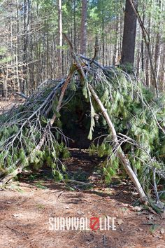 These 9 DIY survival shelters could just save your life when the sun is getting low and you're out of luck! #survivalshelter #DIYsurvivalshelter #survivalskills #survivaltips #survival #survivallife Survival Shelter, Survival Life, Survival Skills, Shelters, Garden Tools, Environment, Sun, Ideas, Animal Shelters