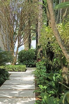 A Mantis Compos-Twin Evaluate - Improved Composting While In The City Setting Jardim Tropical A Beira-Mar Projetado Por Alex Hanazaki Patio Tropical, Tropical Landscaping, Modern Landscaping, Backyard Landscaping, Landscaping Ideas, Inexpensive Landscaping, Backyard Patio, Modern Landscape Design, Landscape Edging