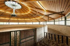 Dream Barn Indoor Walker and Round Lunge Pen. Walker Arms are Suspended from the Ceiling, Keeping the Center Free.
