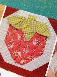 3D strawberry quilt block, in: Sew Sweet Baby Quilts by Kristin Roylance, seen at Road 17 N Quilt Shop (Manitoba). October 2015.