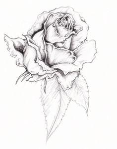 Image detail for -Rose Tattoo Designs Design Tattoos - Free Download Tattoo #12015 Rose ...