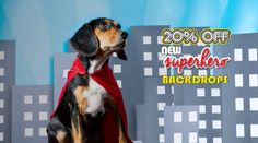 It's a bird. it's a plane. it's new Superhero Backdrops from Backdrop Express! Snap some crime fighting shots on our new comic style and cityscape photo backdrops. Photo Backdrops, Photography Backdrops, Superhero Backdrop, Comic Styles, Photographing Kids, Photo Booth, Plane, Crime, Shots